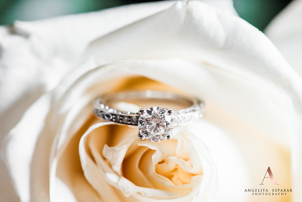 2017AngelitaEspararPhotography_rings-8