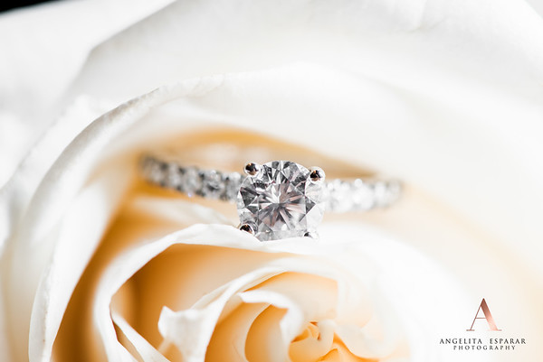 2017AngelitaEspararPhotography_rings-10
