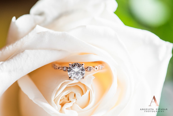 2017AngelitaEspararPhotography_rings-5