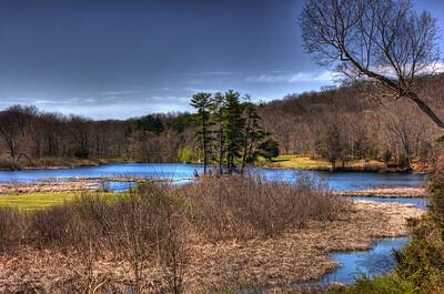 Ringwood Mill Pond
