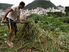 A resident of the Dona Marta Slum clears weeds to make way for a vegetable garden in the Botafogo distrct of Rio de Janeiro, Brazil. The RIo de Janeiro state police, notorious for its lack of tact with slum residents, has started a new community policing program in the community which will be implemented in other areas if successful. Drug traffickers were driven out in Dec. 2008 and new, young police recruits have taken their place as the law of the land, including permanent police posts in the slum. (Australfoto/Douglas Engle)