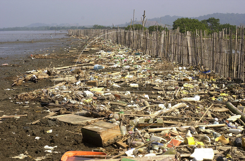 Trash litters the banks of the Guanabara Bay in Mage, near Rio de Janeiro.(Australfoto/Douglas Engle)