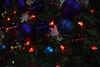 Rio Tree Lighting-6346-2017-Nov-17-Best