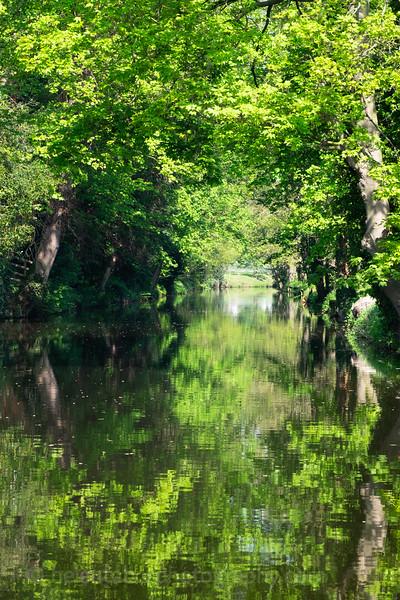 Ripon canal 7 May 18-18.jpg