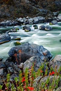 Blossom Bar, Rogue River