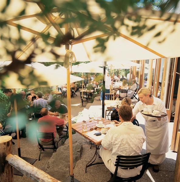 River Café Patio through the trees