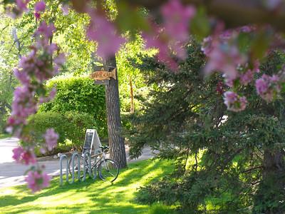 RiverCafe_Exterior_SpringBlooms_Bike