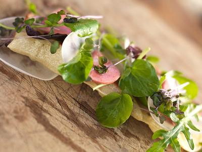 River Café Spring Salad of Mixed Greens