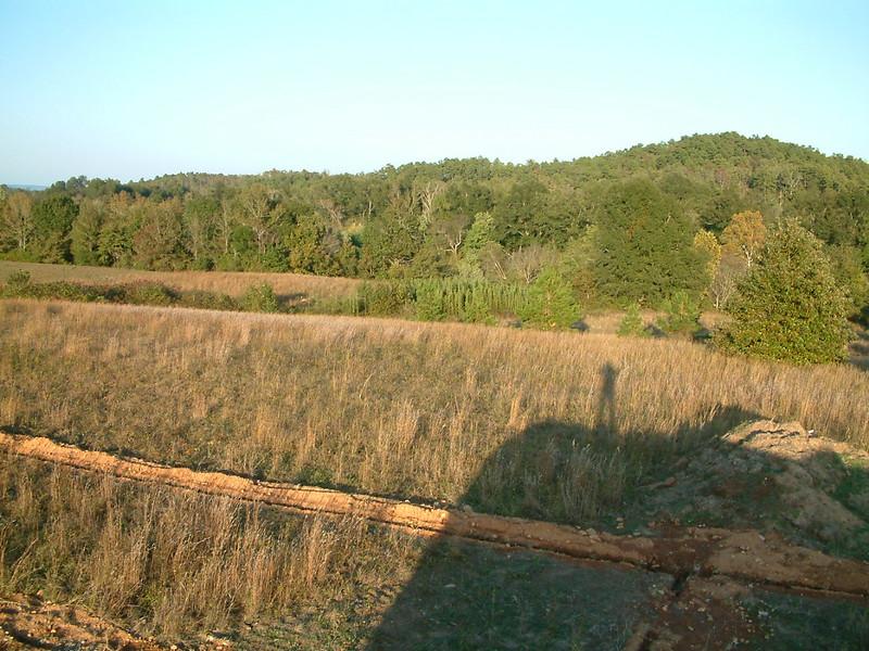 top of trailer looking northeast, river behind trees