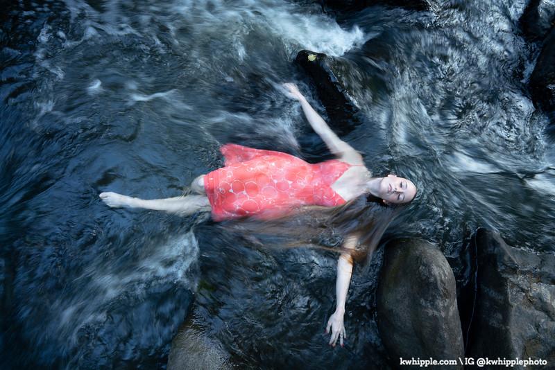 gail rye river series