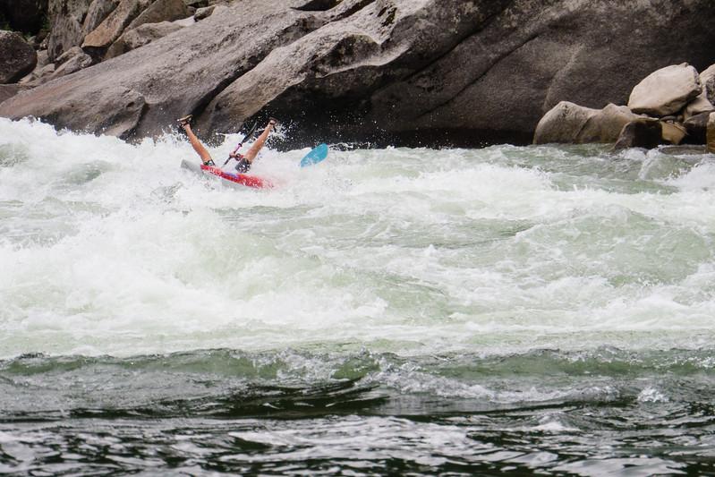 Still bravely paddling