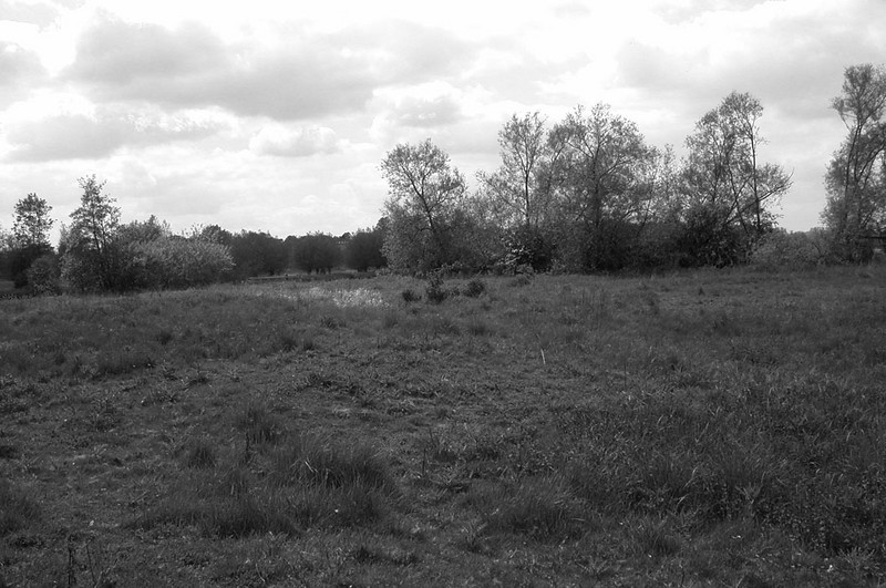 <center><font size=3><u> - River meadows - </u></font> (BS0962)  Today only the field to the south-east of Gurney's Garage and the water meadows to the north-east of of the River Camping site (shown here) remain of the former landscape.  (see also BS0963)