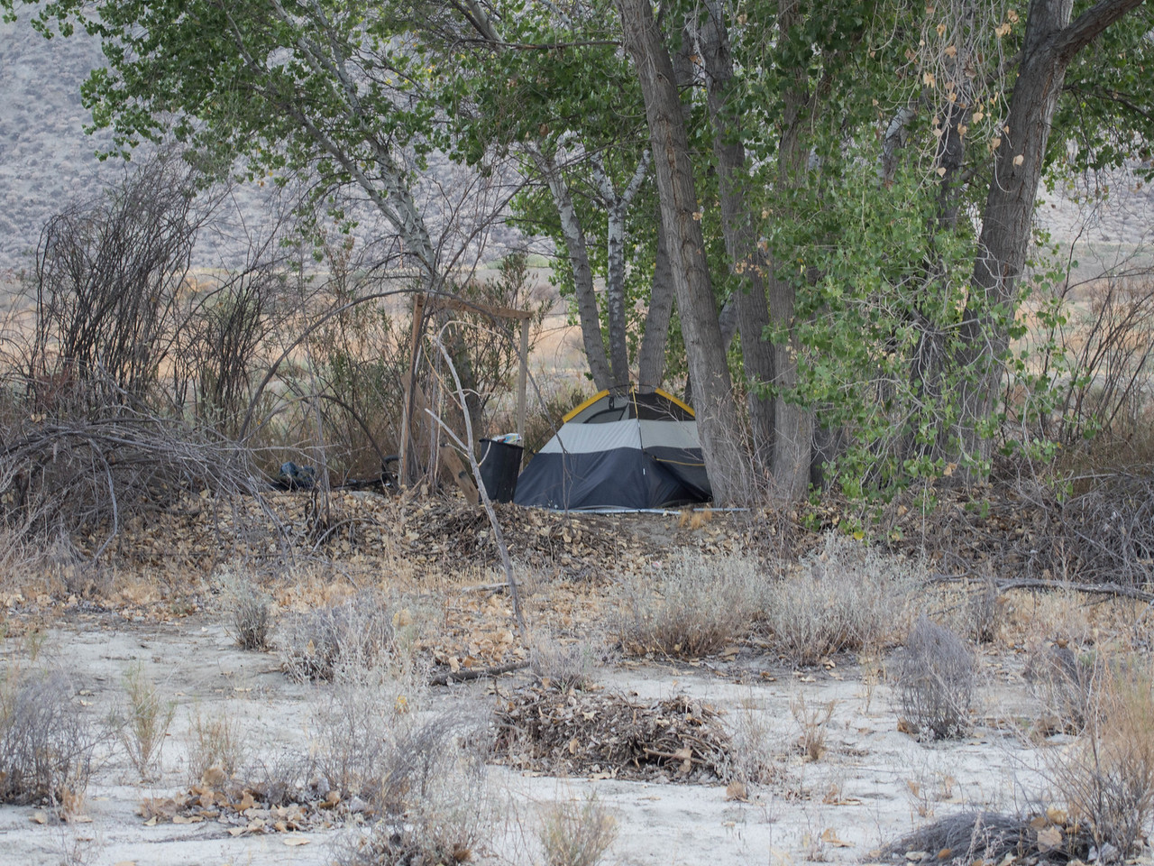I thought all the guys living on the river had left because of the heat wave.  Of course if someone were to die in his tent, who would ever know?