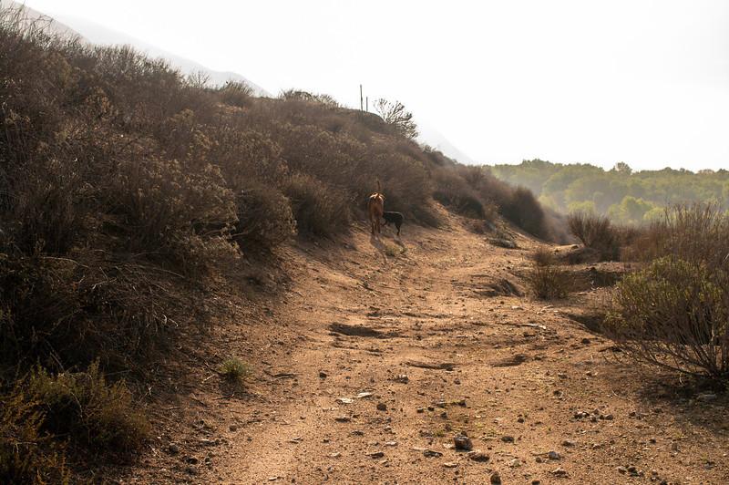 Hike on 3-4-14