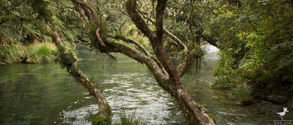 Tarawera Falls and River