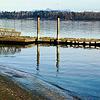 Dock, Semiamoo