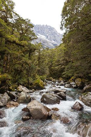 Donne River, Darran Mountains, Fiordland National Park