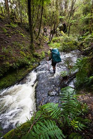 Male tramper crossing Blackwood Stream, Mangahao - Makahika Track, Tararua Forest Park