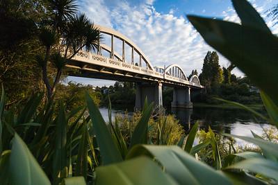 Fairfield Bridge framed through flax (harakeke), Hamilton, Waikato King Country