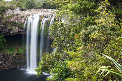 Rainbow Falls, Kerikeri River Track, Kerikeri Northland
