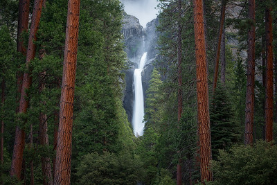 The view of Yosemite Falls through the trees - Yosemite, California