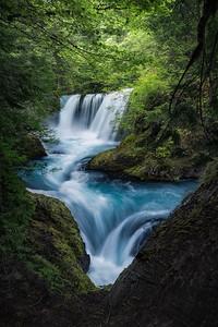My favorite view of Spirit Falls during peak Spring greens, Washington