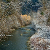 Miner's Creek Snow