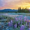 Kidder Creek Sunset