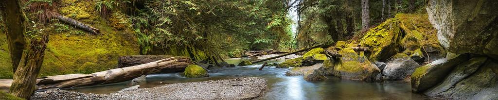 The Lyre River Canyon near Joyce, Washington