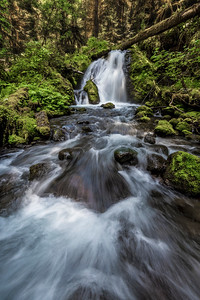 Unnamed falls, Little River, Olympic National Park