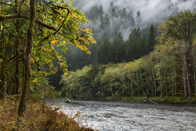 The Elwha River, Olympic National Park