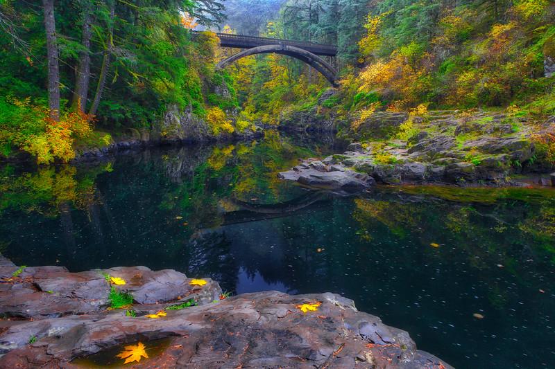 ~ Autumn Arch  ~
