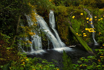 Beaver Creek Falls near Forks, Washington
