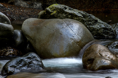 Boulders, Upper Dungeness River, Olympic National Forest, WA