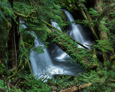 Unnamed falls, Murhut Creek, Olympic National Forest