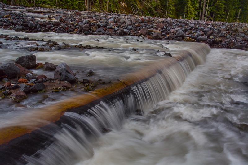 ~ Tahoma Creek ~