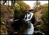 Falls (Ingleton)
