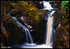 Pecca Falls (Ingleton)