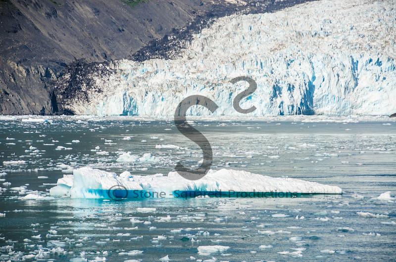 Aialik Glacier Terminus
