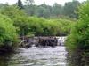 Large beaver dam - we ran it center left