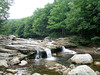 Red Creek in Dolly Sods Wilderness, Tucker County, WV. Near the Red Creek Trail and Fisher Spring Run Trail junction.