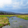 Upper Blackwater River in Canaan Valley