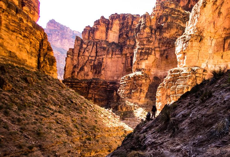 Canyon Scramble.jpg