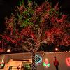 20091128_Mission Inn Xmas Lights_1069