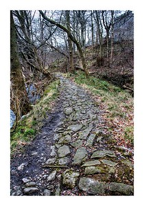 Old riverside path at Persley Castle.