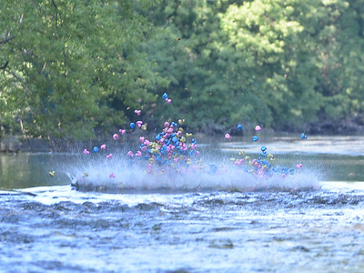 Riverwalk Duck Race 2016