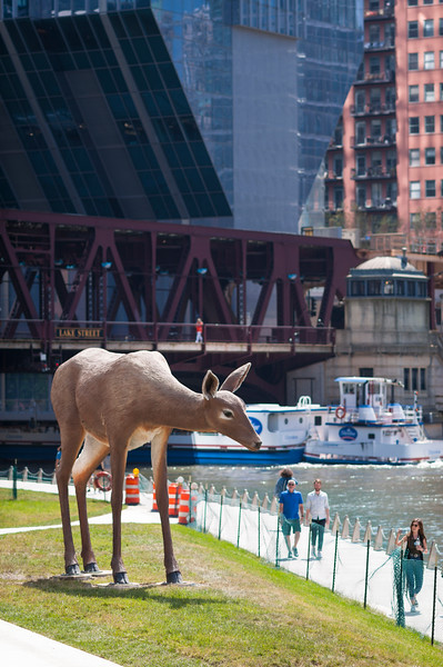 Deer public art sculpture by Tony Tasset on Chicago Riverwalk
