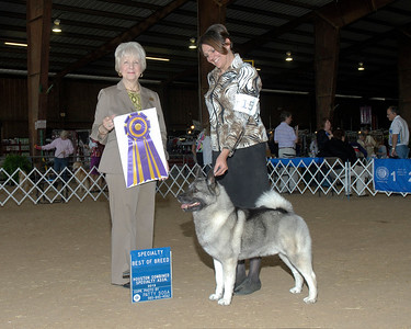March 2013 - Best of Breed - Specialty Show - Norwegian Elkhound Club of Greater Houston