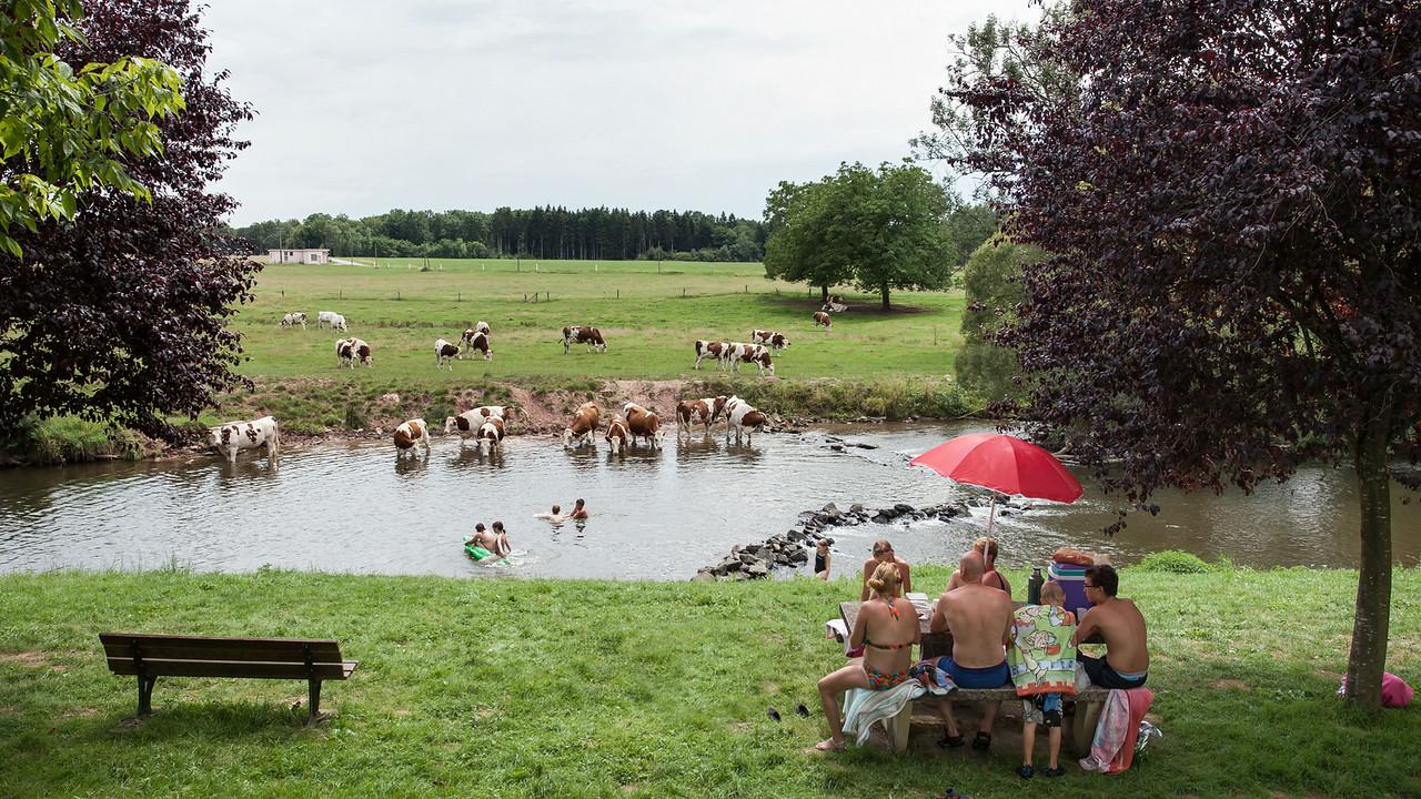 Selles, Vosges