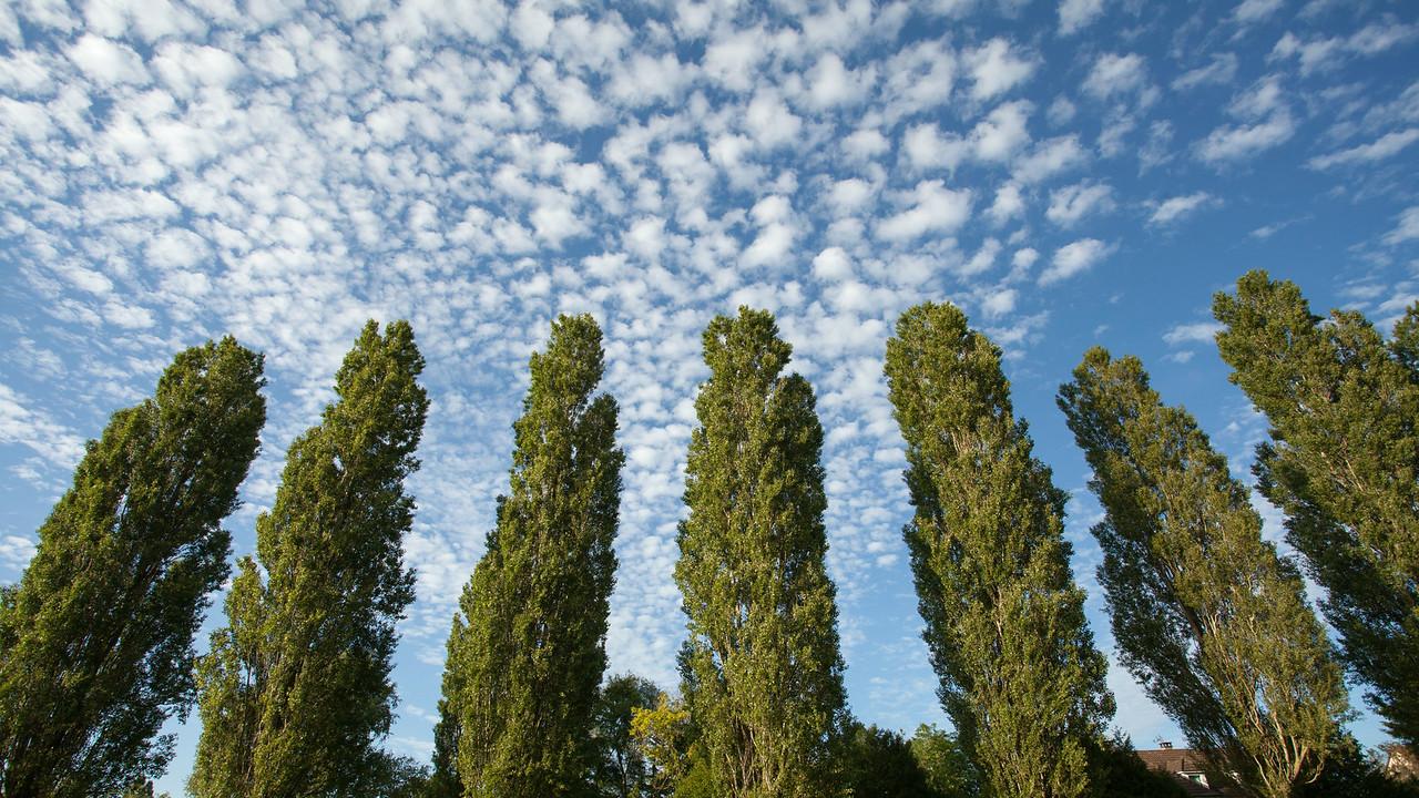 Ciel de fin d'après-midi